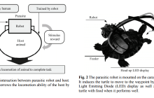 A hybrid animal-robot interaction called: the parasitic robot system