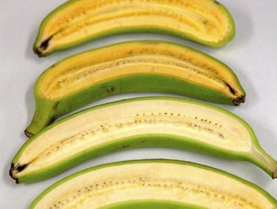 Research has produced a golden-orange fleshed banana, rich in pro-vitamin A