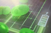 A new approach to efficient algae-powered fuel cells
