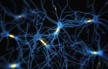Functional patient-specific neurons created directly from blood samples