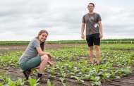 What if we could boost the yields of major food crops by almost 50 percent?