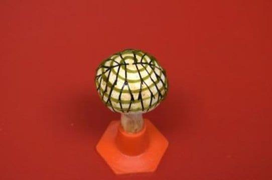Fusing nanotech, bacteria and fungi to create