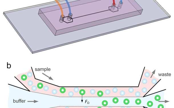 Detecting cancer cells in blood with a new microfluidic device
