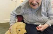 Robotic pets that respond to human interaction can benefit the health and wellbeing of older people living in care homes