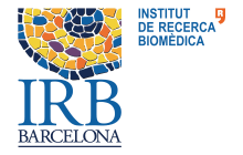 Institute for Research in Biomedicine (IRB Barcelona)