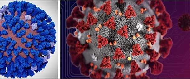 New supercomputer simulations help to design new drugs and vaccines to combat the coronavirus