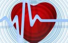 A single-shot cure for heart disease works in monkeys