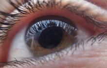 Future glaucoma treatment: A new approach to regenerate the optic nerve