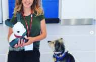 Could robotic animals be a better alternative to real-life therapy dogs?