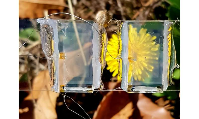 The solar cell created by the team is transparent, allowing its use in a wide range of applications Photo courtesy: Joondong Kim from Incheon National University