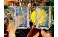 Invisible solar panels will be tomorrow's windows