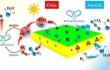 Generating hydrogen fuel while cleaning up wastewater