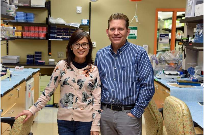 Drs. Xiaochun Long and Joseph Miano. CREDIT Kim Ratliff, Augusta University