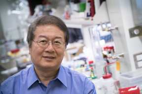 Using a series of small molecule inhibitors, not antibiotics, to treat deadly tuberculosis