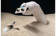 Researchers have developed a fast, steerable, burrowing soft robot for both here and way out there