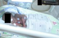 An AI remote monitoring system to non-invasively watch premature babies