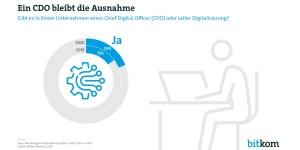Anteil von Unternehmen mit CDO (Quelle: Bitkom)