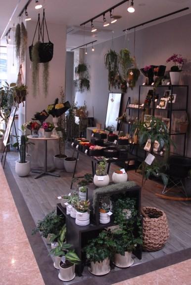 INO FLOWERS天文館店 観葉植物