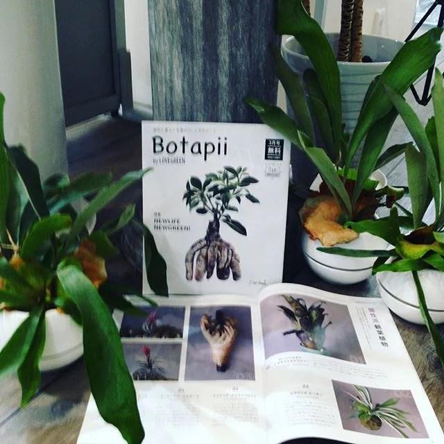 botapii3月号