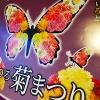 菊まつりポスター