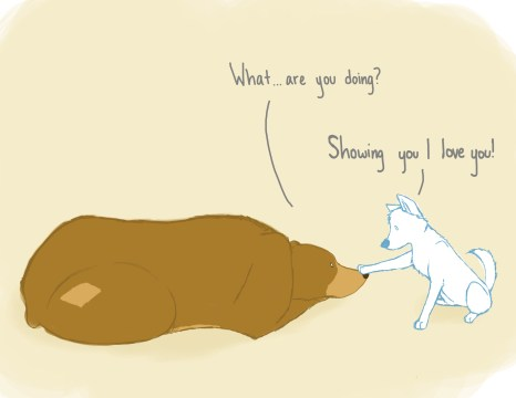 """[image: one panel comic of a brown bear and a white dog. The dog has a paw placed on the bear. """"What...are you doing?"""" the bear asks. The dog responds, """"Showing you I love you!""""]"""