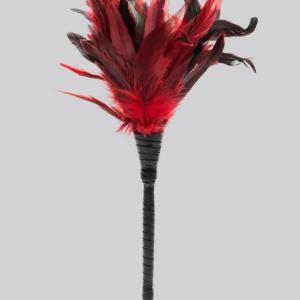 Fetish Fantasy Frisky Red Feather Tickler