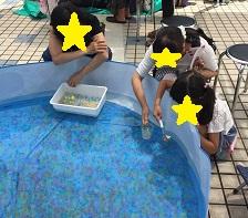 ぷよぷよすくいプール