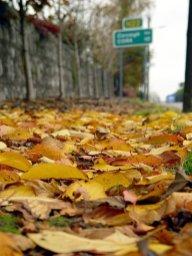 photoblog-20041110