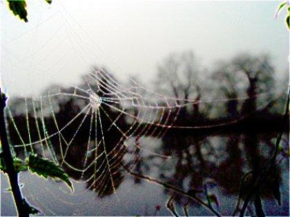 photoblog-20041127