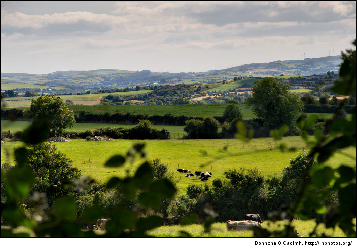 The rolling hills of the Irish countryside