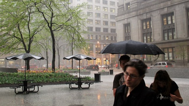 Not happy in the rain