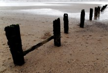 The Groins of Youghal