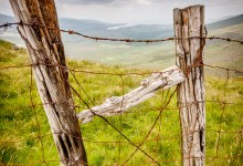 Fence in the Conor Pass