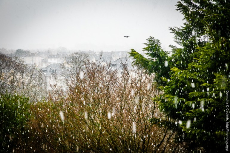 Snow in Blarney