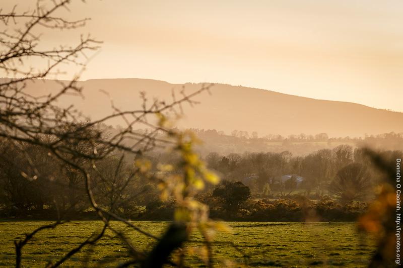 Sunset on farmland