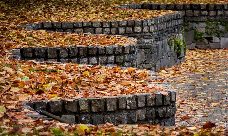 Autumn in Fitzgerald Park