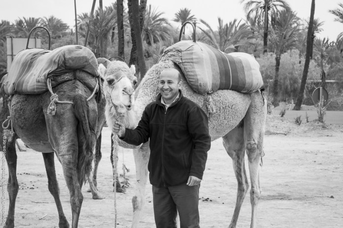 The Camel Guy