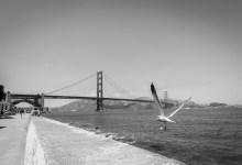 Golden Gate Bridge, 2006