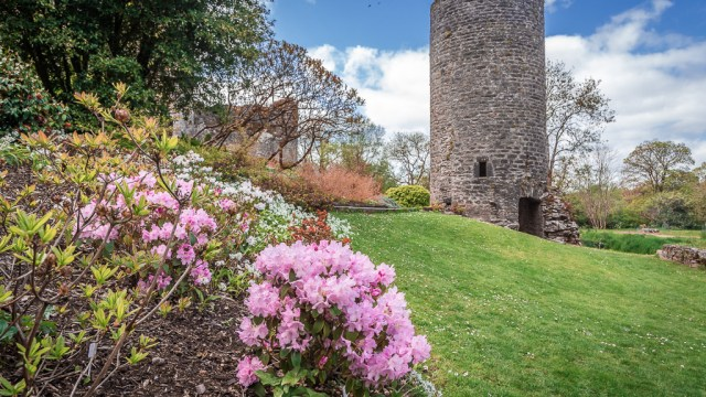 Blarney Castle Lookout Tower