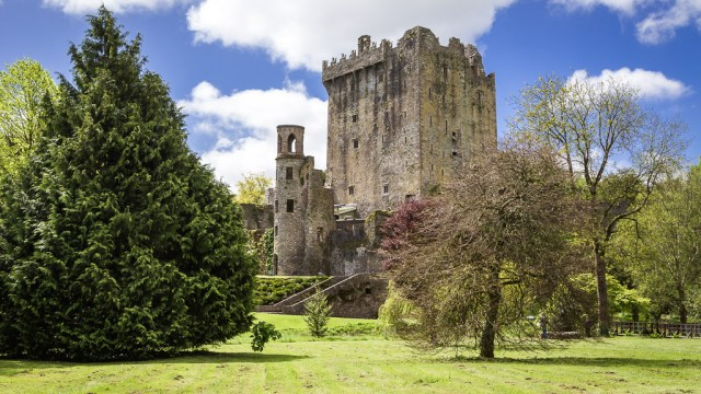 Blarney Castle and Trees