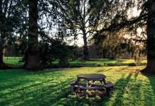 Garden Table in the morning