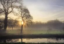 Fog near the river