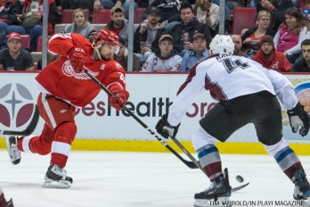 Red Wings vs Avalanche 14