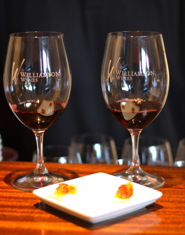 Delicious Pinot pairing at Williamson