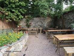 Courtyard garden at River Cottage Axminster