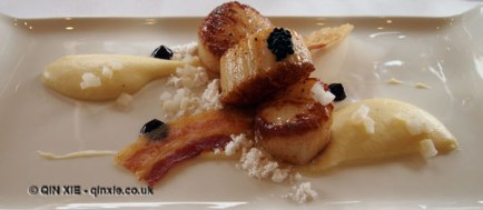 Scallop and celeriac puree, Humphry's, Stoke Park, Buckinghamshire