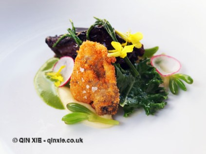 Pork, cockles, Alexander flower, wild fennel and sea beet, Ormer by Shaun Rankin, Jersey