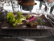 Vine leaf starter at the Auberge restaurant, Abbaye de Valmagne, Villeveyrac