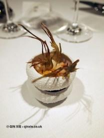 Artichoke and lobster, Azurmendi, Vizcaya