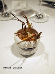 Artichoke and lobster, Azurmendi, Vizcaya